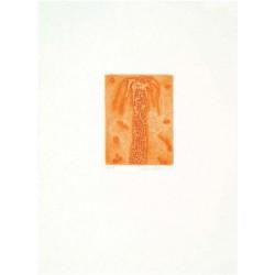 Fathi Hassan - Kusti arancio 1
