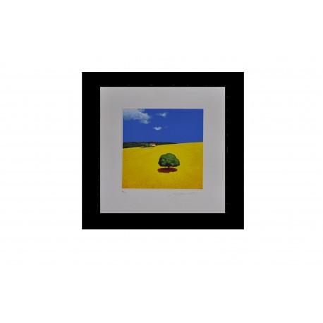 Giò Mondelli - Paesaggio di campagna