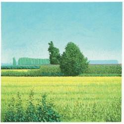 Mario Corrieri - I Paesaggi 1
