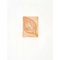 Fathi Hassan - Kusti arancio 3