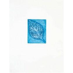 Fathi Hassan - Kusti blu 3